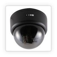 Camera DOME IP inteligenta, lentila fixa 3.6mm